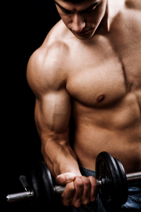 Top Training Routines