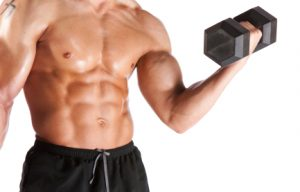 keys to muscle growth
