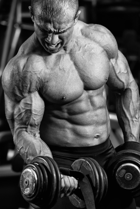 secrets to muscle growth